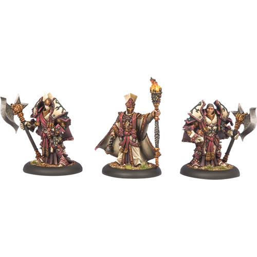 Warmachine: Protectorate - Visgoth Rhoven & Honor Guard (3)