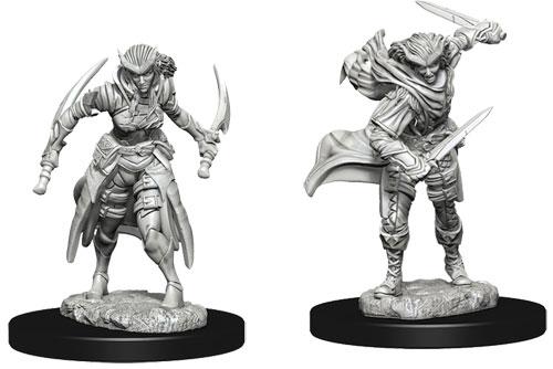 D&D Nolzur's Marvelous Unpainted Miniatures: Male Tabaxi Rogue (2